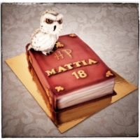 harry_potter_cake